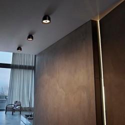 Lámpara Plafón o Aplique WAN W/C Flos